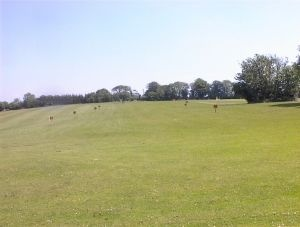 frankfield-golf-club_032704_full
