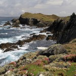 Cape Clear2