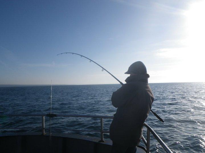 pêche brochet irlande