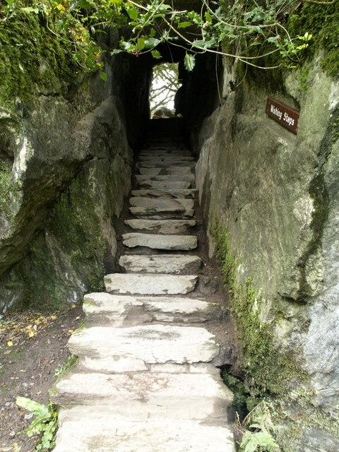 wishing-steps